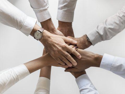Abogados Contadores Psicólogos y Médicos trabajarán juntos